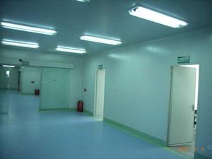 纳米抗菌无尘油性墙面工程